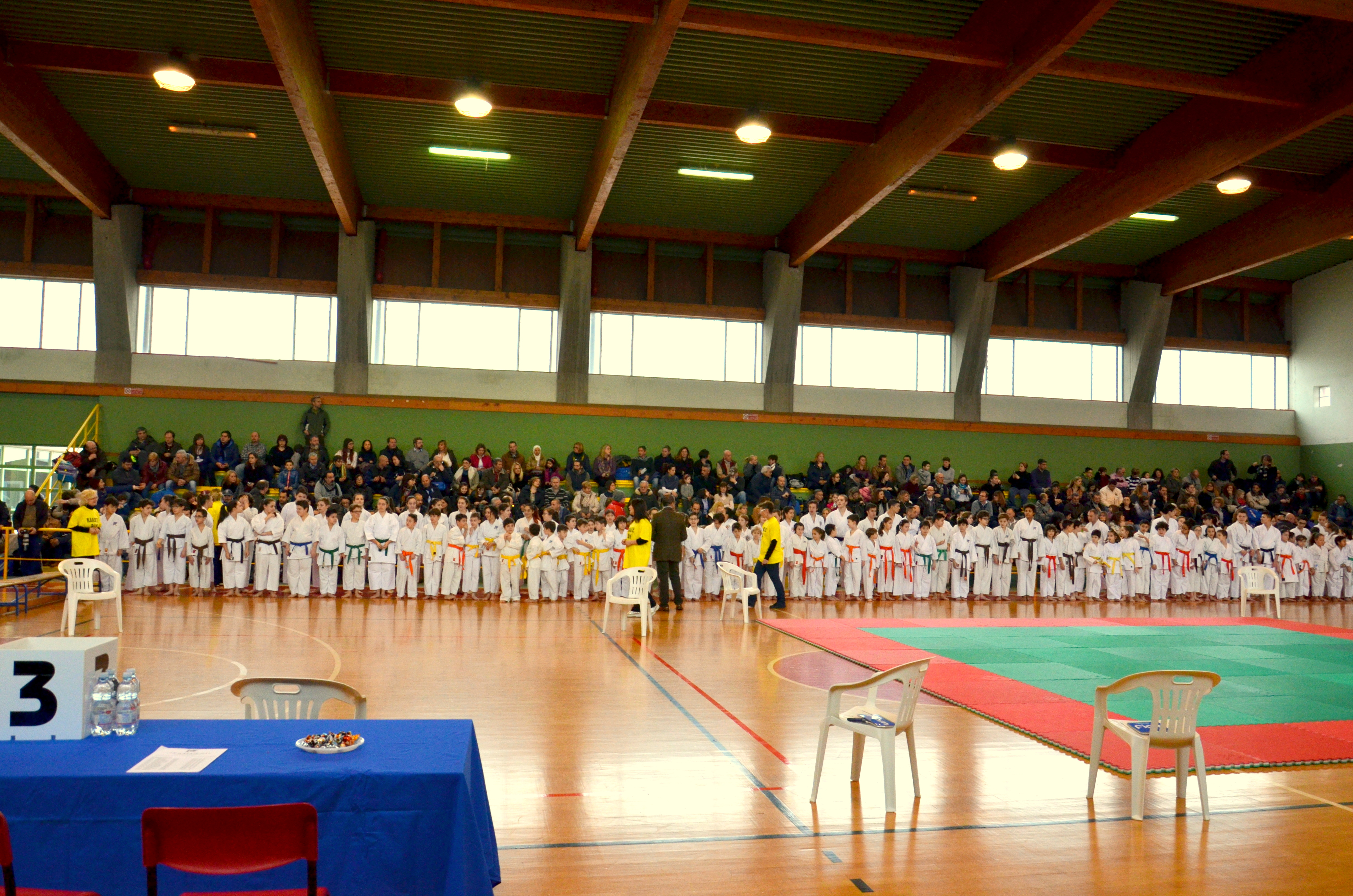 karate day 2016